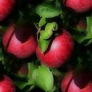 Red Apples On Tree Nature Pattern by SmilinEyes