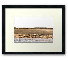 L'Ile aux Oiseaux - Bay of Arcachon, France. Framed Print
