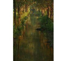 Ljubljana Moors Photographic Print