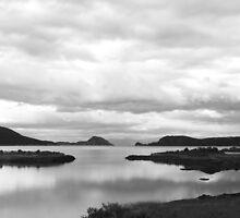 Lapataia Bay, Tierra del Fuego National Park by Bob Ramsak