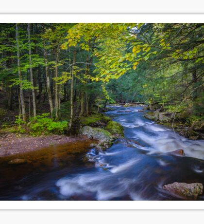 Whitewater Stream in Lush Forest Sticker