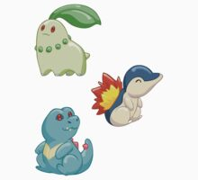 Pokemon Starters - Gen 2 by TipsyKipsy