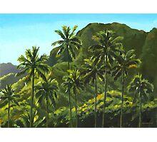 Greens of Kahana Photographic Print