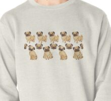 //Pugs Galore//  Pullover