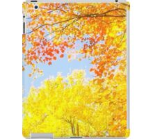 Autumn's Vibrancy iPad Case/Skin