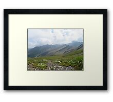 Beautiful nature mountains flowers Framed Print
