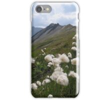 Beautiful nature mountains flowers iPhone Case/Skin