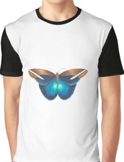 colourful butterfly Graphic T-Shirt
