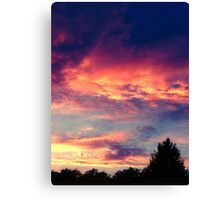 Suburban evening  Canvas Print