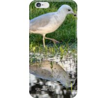 Seagull Reflected ... and good news! iPhone Case/Skin