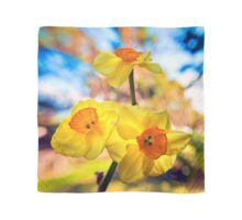 Jonquils in the sunlight Scarf