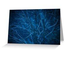 Tree at winter snowy night Greeting Card