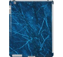 Tree at winter snowy night iPad Case/Skin