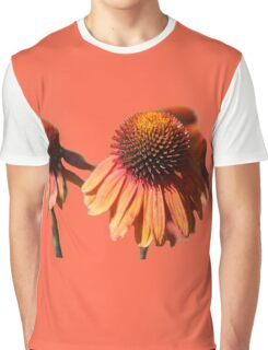 Cone Flowers Style 2 Graphic T-Shirt