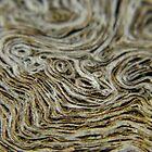Patterns of Wood by WildestArt