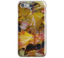 October greetings from Galicia . Dr.Andrzej Goszcz. iPhone Case/Skin