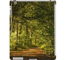 Path to nowhere iPad Case/Skin