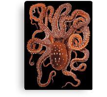 Orange Octopus Canvas Print