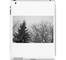 black and white snow trees iPad Case/Skin