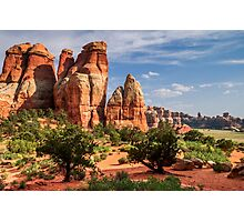 Canyonlands Photographic Print