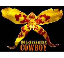 Midnight Cowboy Photographic Print