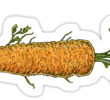 The Carrot Fish  Sticker