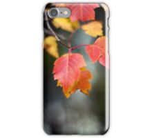 Autumn Red II iPhone Case/Skin