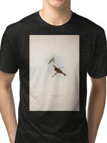 John Gould The Birds of Europe 1837 V1 V5 133 Yellow Willow Wren Tri-blend T-Shirt
