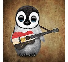 Baby Penguin Playing Egyptian Flag Guitar Photographic Print