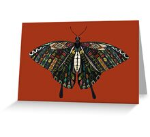 swallowtail butterfly terracotta Greeting Card