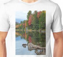 Fall Foliage / Colton Pond, VT Unisex T-Shirt