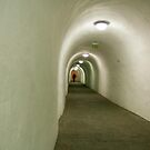 Narrow Passage by DPalmer