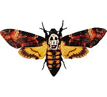 Silence of the Lambs Photographic Print