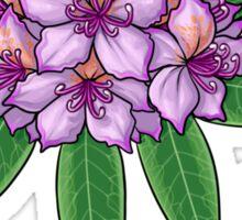 Rhododendron ponticum Sticker