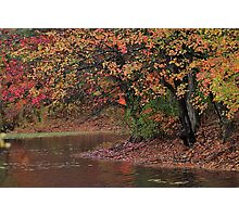 Colors by the pond Photographic Print