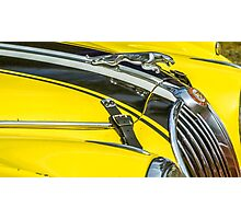 Yellow Jaguar and Hood Ornament Photographic Print