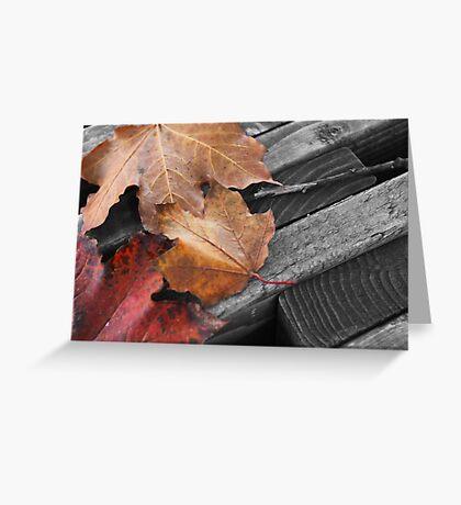 Leaf Bench Greeting Card