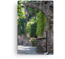 streets of a village typical Canvas Print