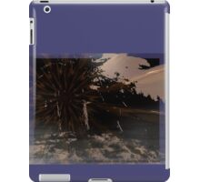That such Things exist does not surprise Avalina Kreska iPad Case/Skin