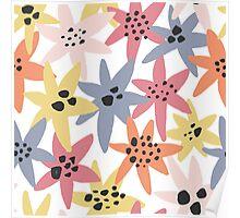 Petronilla Zanetti Designs  Poster