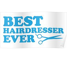 BEST HAIRDRESSER EVER Poster