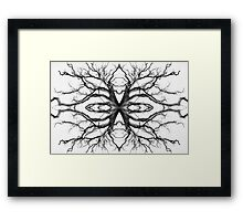 Eyes of the Ents Framed Print