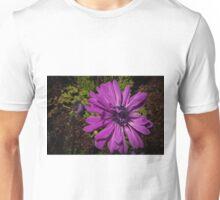 Pale Purple Anemone at Tesselaar Victoria Australia 20160923 7534 Unisex T-Shirt