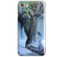 Water Logged Panoramic iPhone Case/Skin