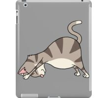 Funny Cat Yoga Down Dog Positions Hatha Gift T-Shirt iPad Case/Skin