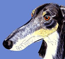 Quirky funny saluki greyhound lurcher by rayemond