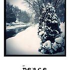 Peace - Holiday Card by Barbara Storey