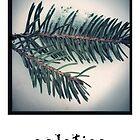 Solstice - Holiday Card by Barbara Storey