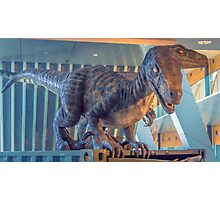 Dinosaurs on the Loose Photographic Print