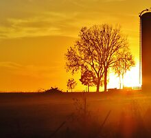 Sunset on the Farm  by lorilee